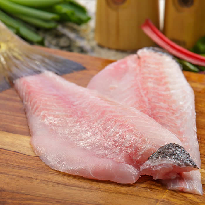 Jenesen Tuna | Retail Seafood | Red Drum